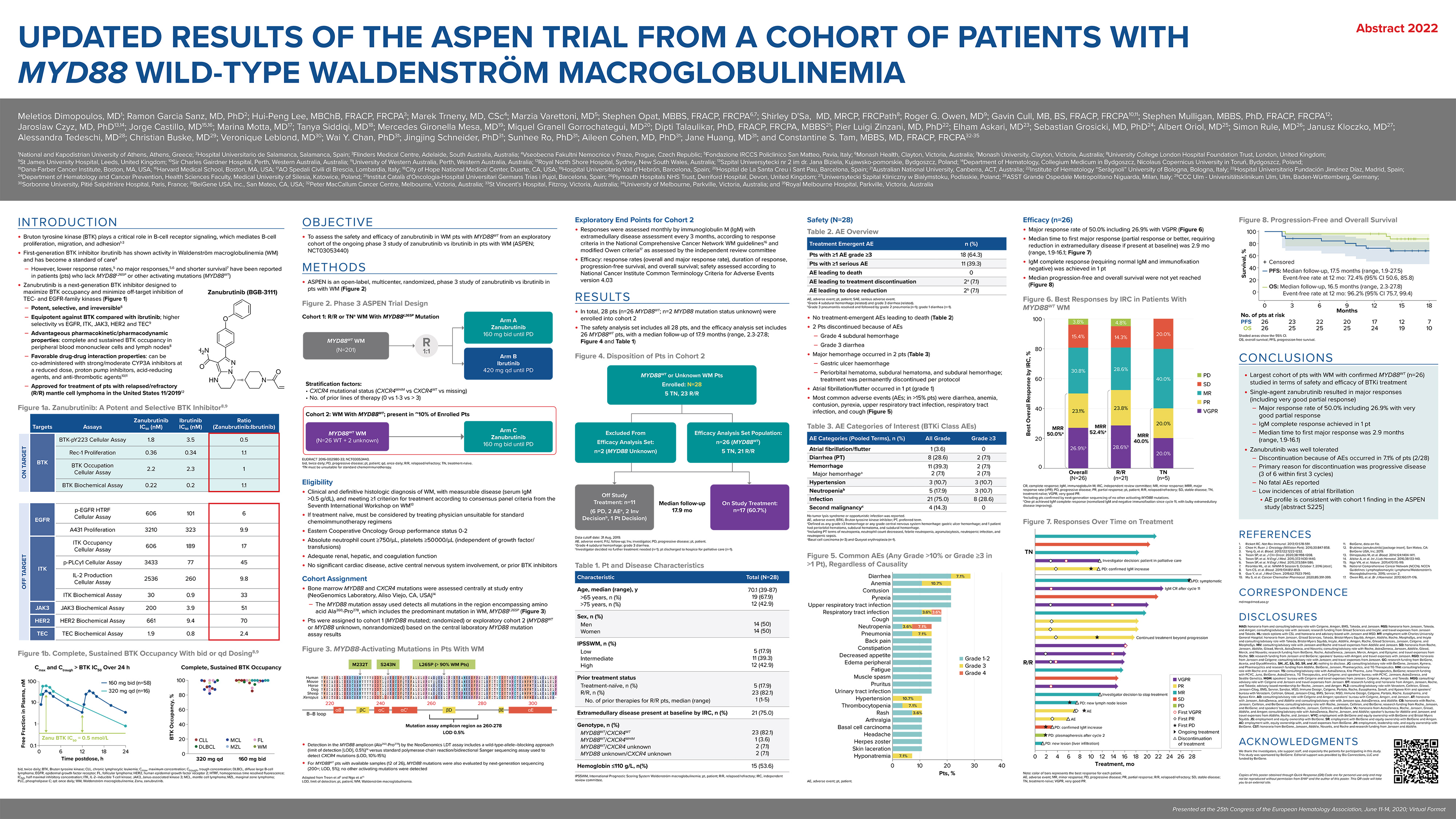 Updated results of the ASPEN trial from a cohort of patients with MYD88 wild‑type Waldenström Macroglobulinemia poster