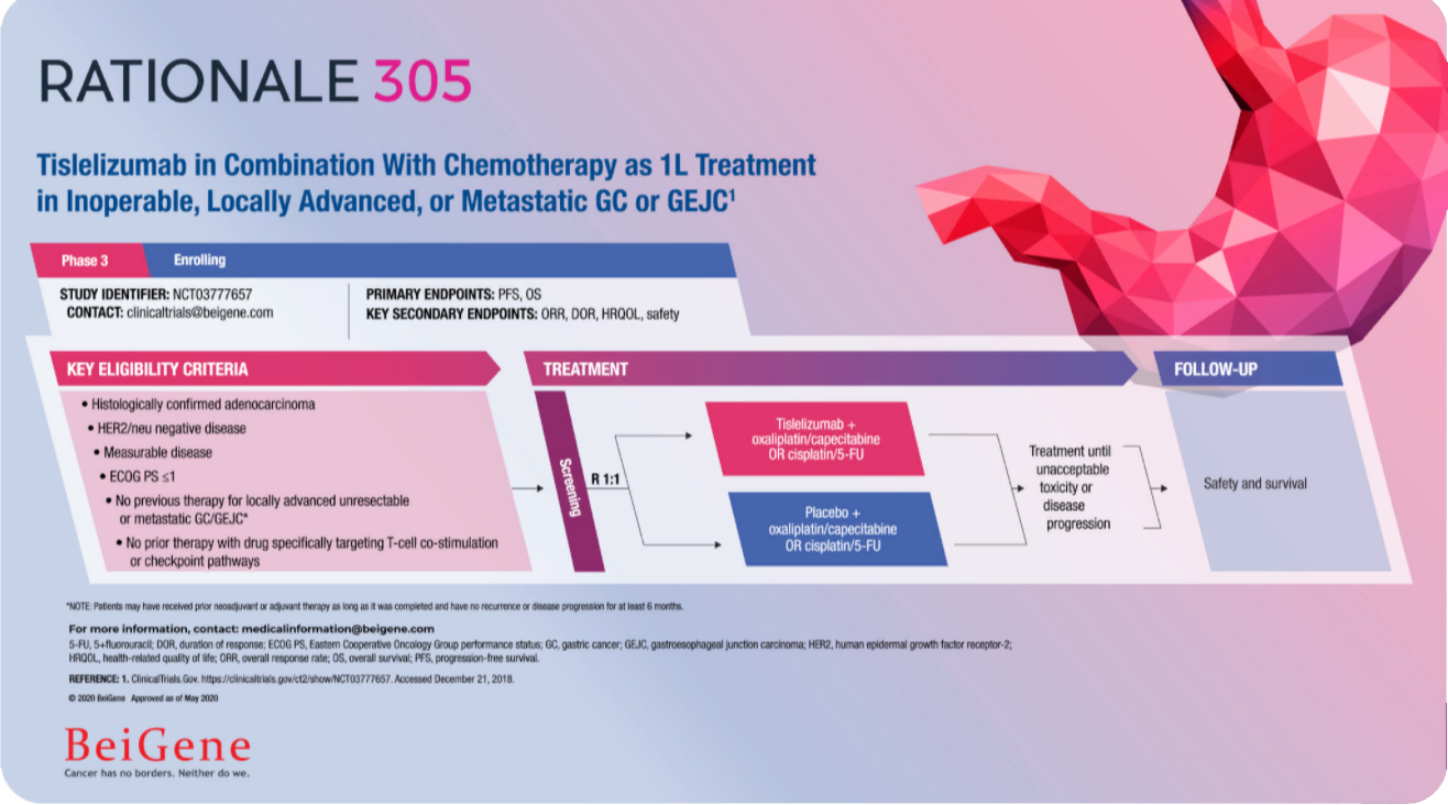 Tislelizumab in Combination With Chemotherapy as 1L Treatment in Inoperable, Locally Advanced, or Metastatic GC or GEJC