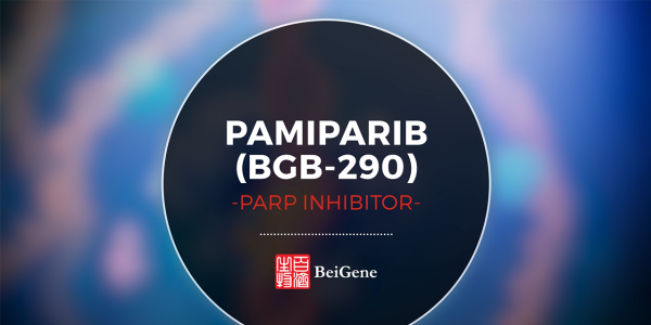 Pamiparib - Mode of Action