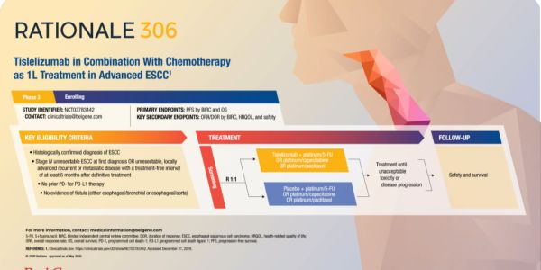 Tislelizumab in Combination With Chemotherapy as 1L Treatment in Advanced ESCC