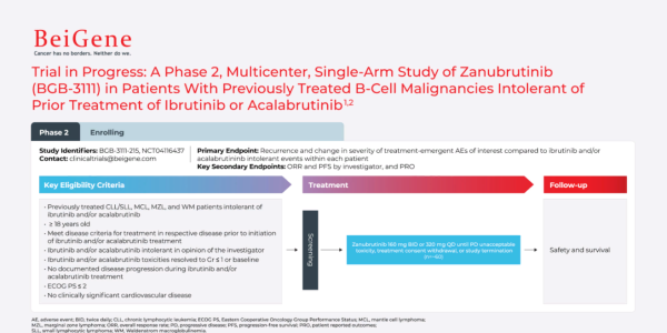 A phase 2, multicenter, single-arm of Zanubrutinib